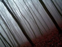 The woods are lovely, dark and deep. ......
