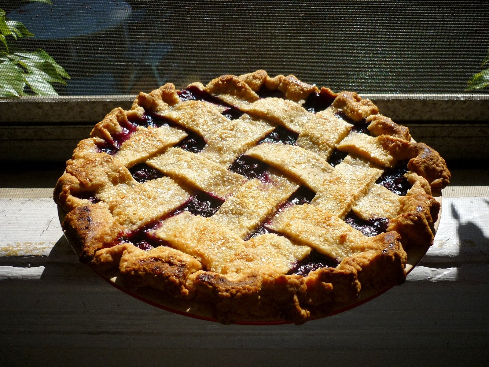 Cranberry And Wild Blueberry Pie Recipe — Dishmaps
