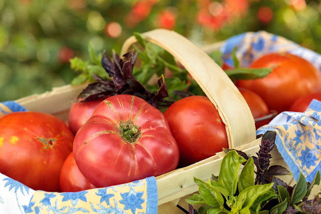 lauberge tomatos >Where the heck have we been??
