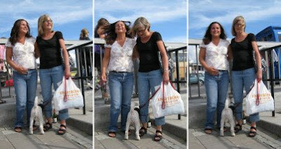 Hustrun med hund