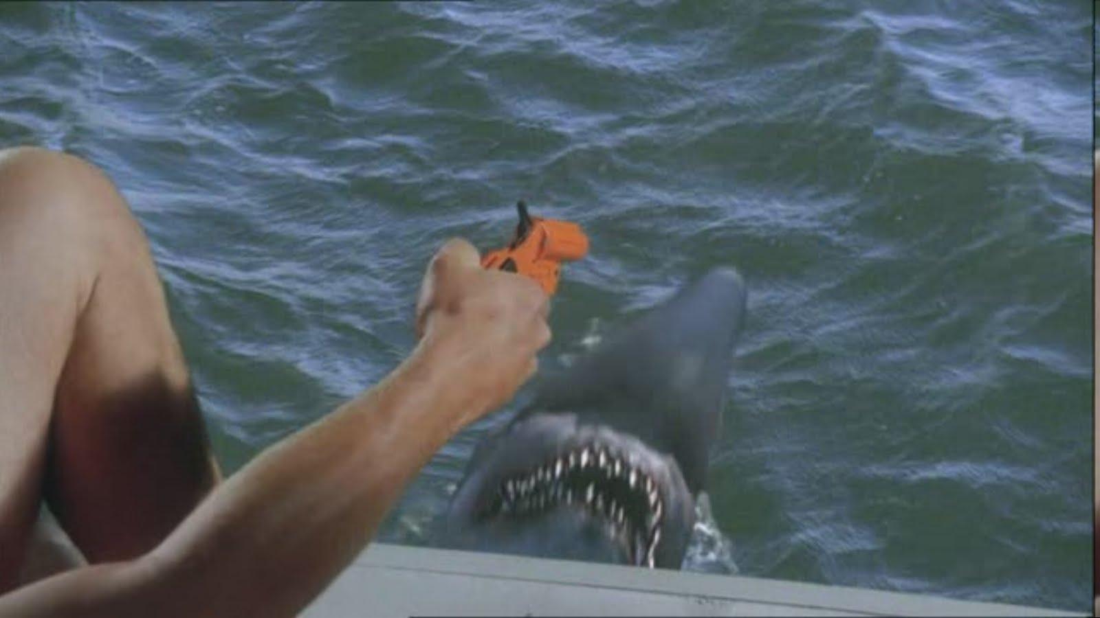 Videotape Malibu Shark Attack 2009