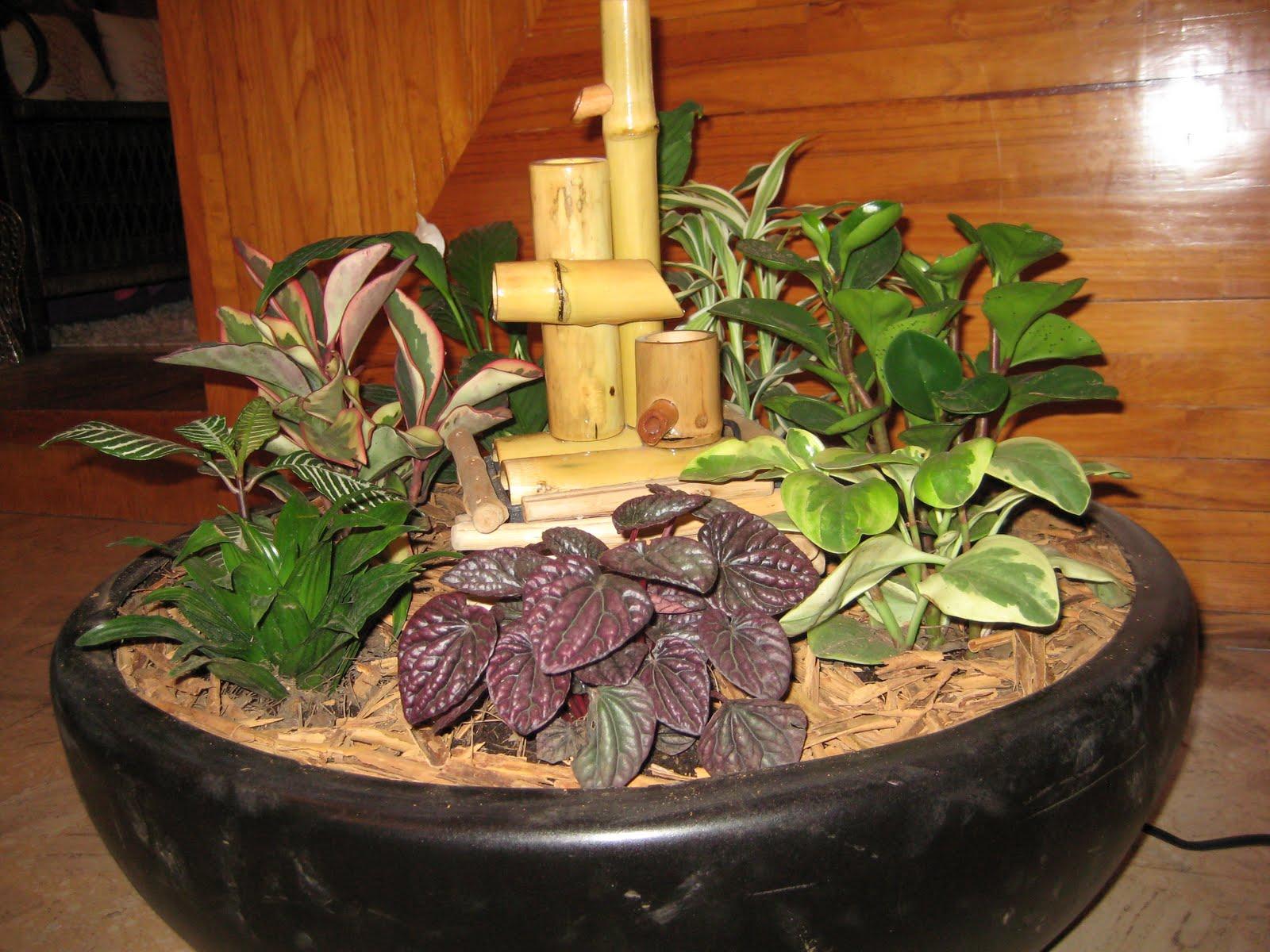 Feng Shui Baño Monica Koppel:Más de Feng Shui Concepto Natura