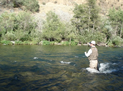 Virtual fly guides trinity river ca fly fishing report for Trinity river fishing