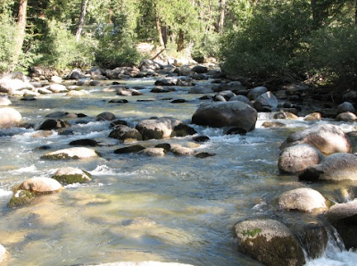 Virtual fly guides kennedy meadows ca middle fork of the for Stanislaus river fishing
