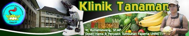 KLINIK TANAMAN (Wilhelmina Rumahlewang, SP,MP)