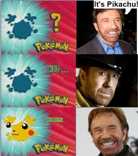 Imágenes graciosas, bizarras, estupidas - Página 6 Chuck_Norris_Pikachu_30_Random_Verticals_Part_4-s450x509-77763