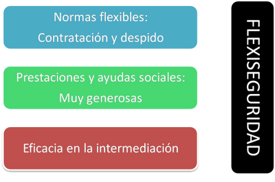 flexiseguridad