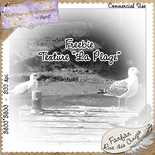 http://laruedesangesdefanfan.blogspot.com/2009/06/de-nouveaux-cu-en-boutique-freebie.html