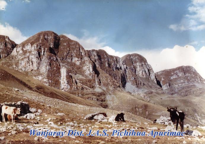 Wanjaray J.A.S. Pichihua- Apurimac