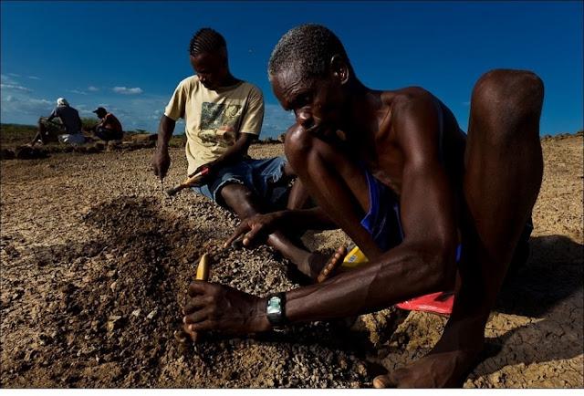 الحياة في إفريقيا - عالية الدقة - 23