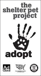[Adopt]