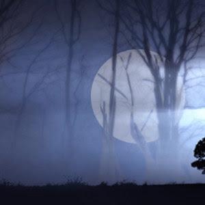 NOCHE DILE Rayo+de+luna