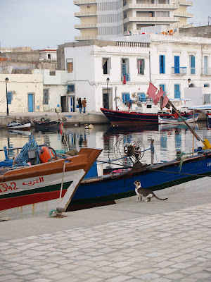 bizerte, Tunisia, tunisie, harbor, fishing boat