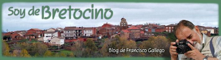 Bretocino