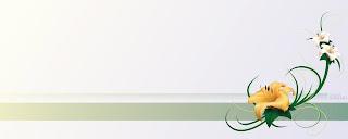 dual screen flower wallpaper 2560x1024
