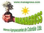 Managross