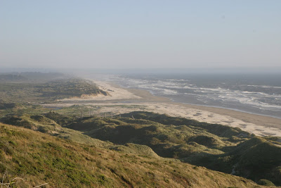 2008-07-08_53_US101_Oregon Dunes_OR_b.jpg