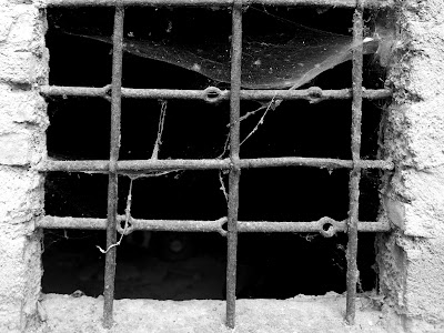 pencere örümcek ağı