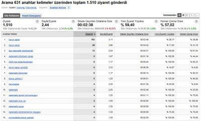 google analytic site istatistiği
