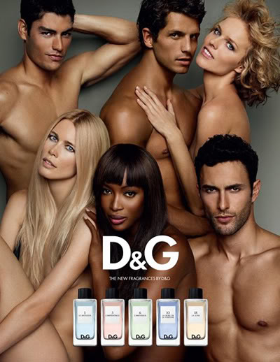 Social Scents: D&G Fragrance Anthology