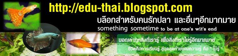edu-thaiFish