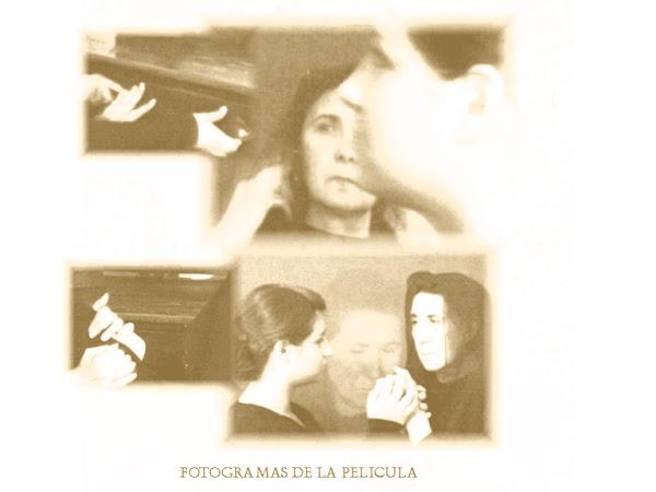 FOTOGRAMAS - VIDA