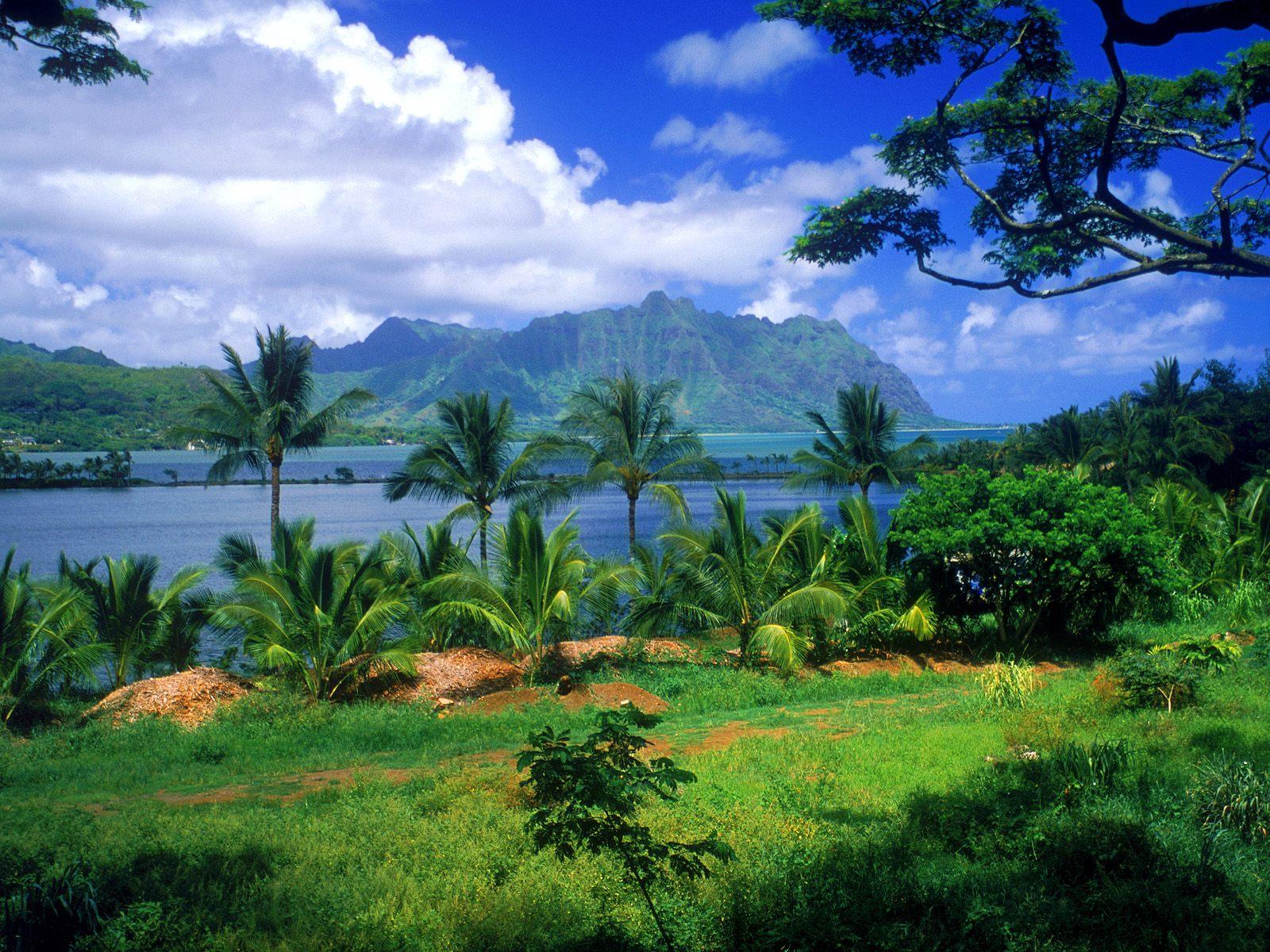 http://4.bp.blogspot.com/_e45GK4i1E8M/TRW999AkvUI/AAAAAAAACV8/QsD9X2TdTJM/s1600/Kaneohe_Fish_Pond_Oahu_Hawaii.jpg