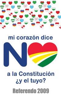 NO A LA CONSTITUCION DEL M.A.S.