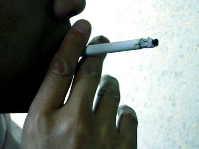 ボートシーバスなのに禁煙2