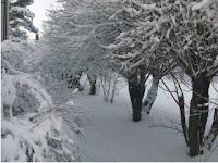 talvikuva1