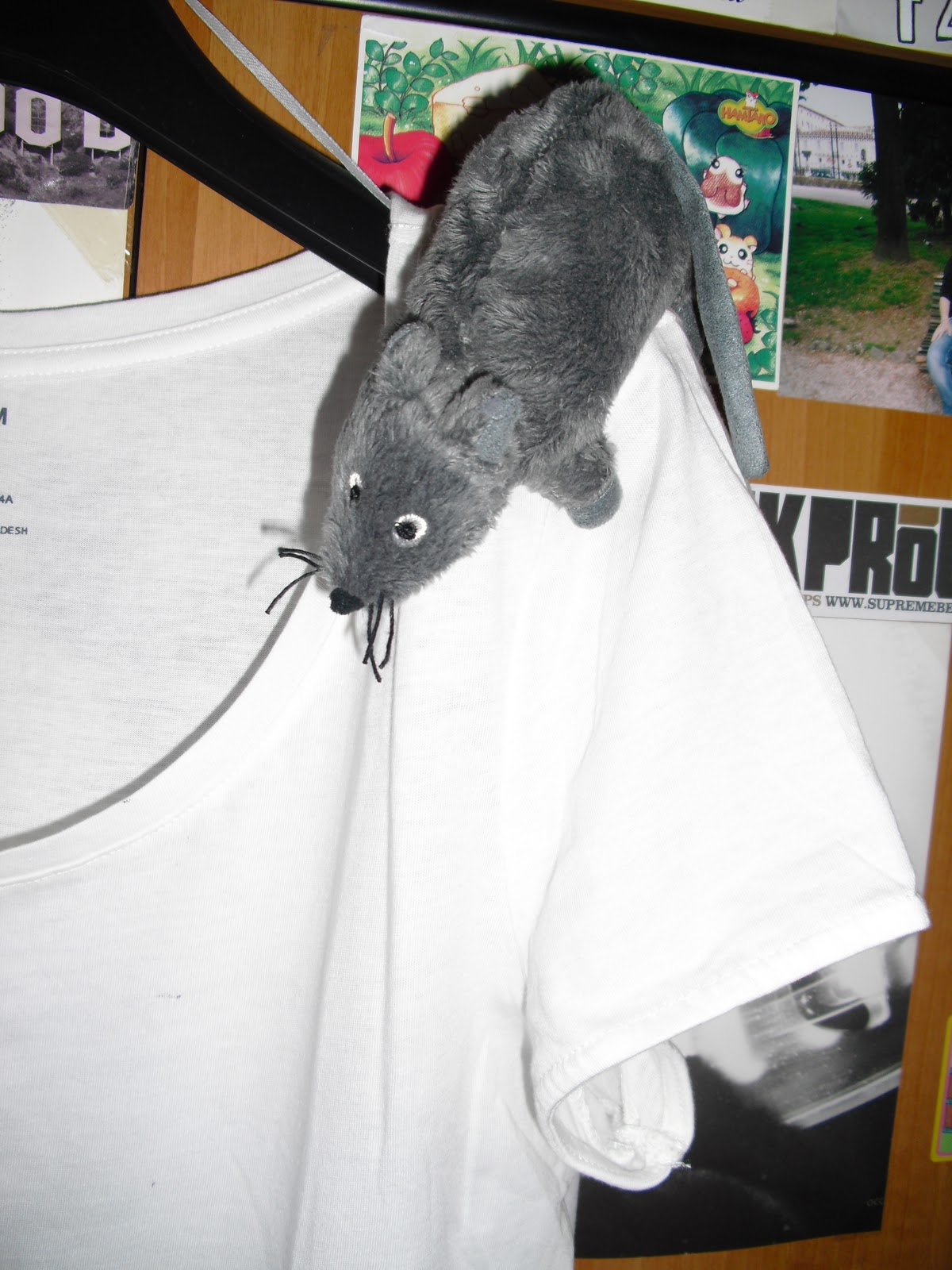 http://4.bp.blogspot.com/_e5o8Es11H5U/TNmhQYg5Y3I/AAAAAAAAAEM/6M7pGzHcaLw/s1600/t-shirt+015.2.jpg