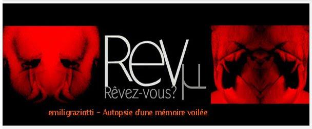 REVµ : un blog de regards sur L'art contemporain