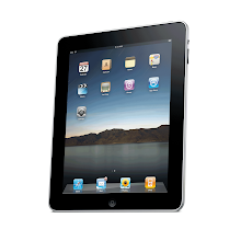 iPad1 / 2 / 3 / Mini  Glossy/ Matt (UV) / 4 way Privacy Screen Protector