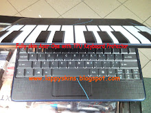 Fully skined with TPU keyboard