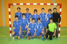 JUVENIS 2008 / 2009