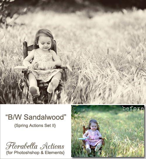 http://4.bp.blogspot.com/_e8uQ573dyZk/S_PDD4RzFFI/AAAAAAAAIcw/4fET3nH1VSo/s640/BW+Sandalwood.jpg