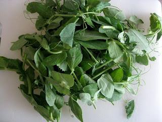 Pea Tendrils, English Peas, Pea Shoots, and Watercress Salad :: Plate ...