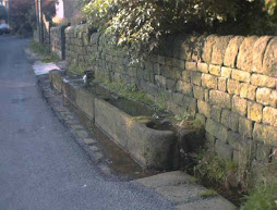 Mankinhole Trough