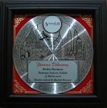 Anugerah Stokis Harapan Auralife 2010