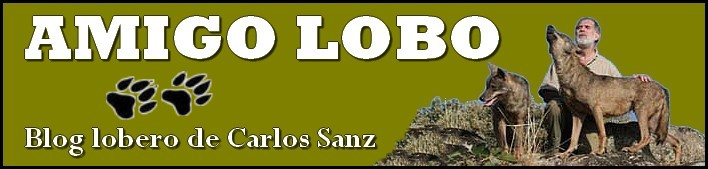 AMIGO LOBO: Blog lobero de Carlos Sanz