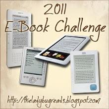 2011 E-Book Challenge