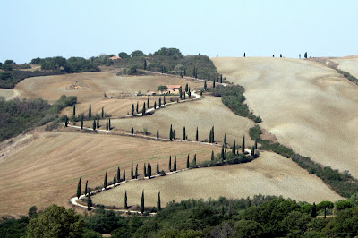 A road slowly winds its way up a Tuscan hill