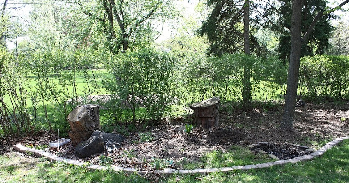 Mutiny In the Garden: Corner Shade Bed Before--->After