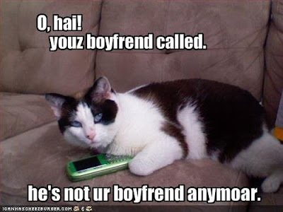 lol cat phone