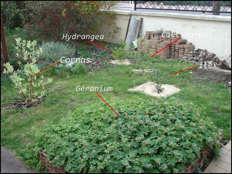 Le jardin des 4 coins: Création d\'un massif à variation chromatique ...