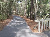 shaded bike path