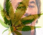 A Caminho da Legalização...