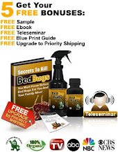 How To Get Rid Of Bed Bugs How To Get Rid Of Bed Bugs From A Leather Couch