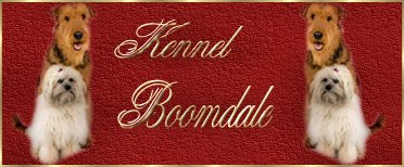 boomdale