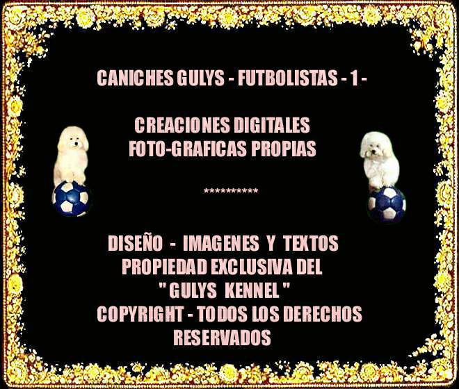 CANICHESGULYS-FUTBOLISTAS-1-